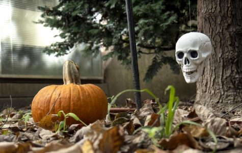 Carbondale hosts Halloween events, first time officially in 18 years
