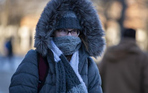 Photo of the day: Cold in Carbondale