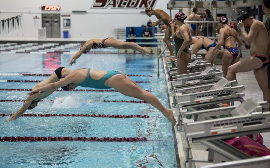 The+SIU+swim+team+dives+into+the+pool+during+the+SIU+vs.+Indiana+State+diving+on+Auditorium+Jan.+18%2C+2019%2C+in+the+Dr.+Edward+J.+Shea.+The+team+practiced+throughout+the+match+and+occasionally+cheered+on+the+SIU+divers.