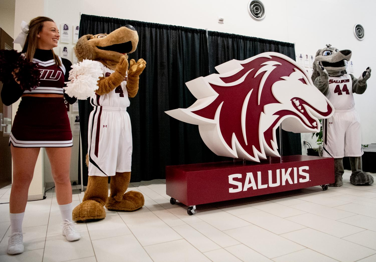 Grey Dawg and Brown Dawg unveil SIU Athletics' new logo on Thursday, Feb. 28, 2019, during the logo-reveal ceremony at SIU Arena in Carbondale, Illinois.