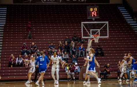 Fans watch game action on Friday, March 1, 2019, during a matchup between the Southern Illinois Salukis and the Drake Bulldogs at SIU Arena.