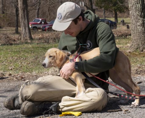 Hike with a Homeless Dog event promotes exercise, dog adoption