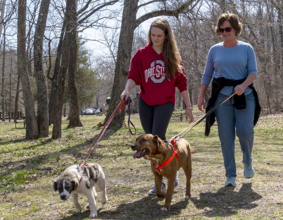 """Alaina and Heather Reno, of Carterville, walk dogs on Saturday, March 23, 2019, for Wright Way Animal Rescue's """"Hike with a Homeless Dog"""" event at Giant City State Park."""