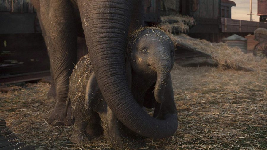 A+scene+from+%22Dumbo.%22+%28Disney%29