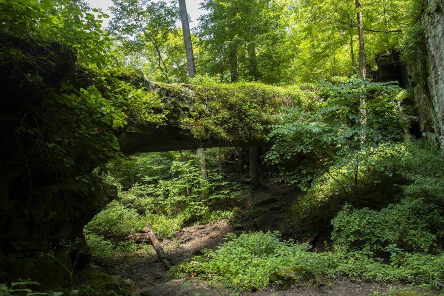 Hiking 101: Pomona Natural Bridge