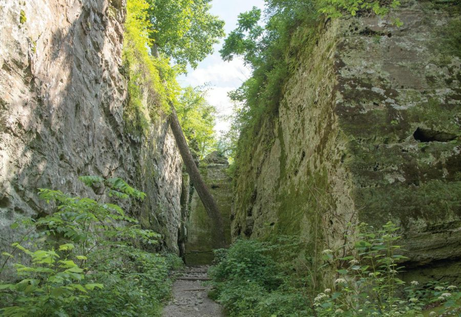 The Giant City Nature Trail winds between giant rock formations on Thursday, June 20, 2019 in Giant City State Park. Names and dates have been carved on these stones, some dating back to the late 1800s.
