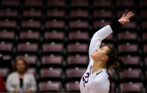 Freshman outside hitter Bailey Neuberger serves the ball on Saturday, Sept. 7, 2019 during the Salukis' 3-1 win against the Southeastern Louisiana University Lions at the Banterra Center.