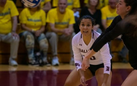 Loyola takes down Saluki volleyball