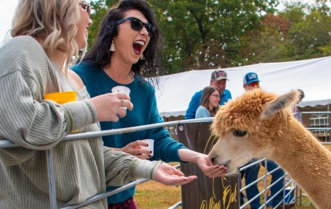 Alpacas and Wine raise money for local animal shelter