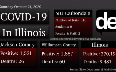 51 Illinois counties are at a warning level for COVID-19