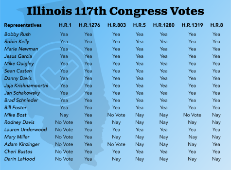 How are we represented? An understanding of Illinois' Congressional delegates and their voting records