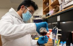 """Sunil Basnet, an international PHD student from Nepal works in the department of chemistry on Wednesday, Feb. 3, 2021, at Southern Illinois University in Carbondale, Ill. Basnet works as a member of Dr. Sean D Moran's research group. """"In our group, we are focused on studying ultrafast dynamics occurring on biomolecules like enzymes, metalloproteins and others,"""" Basnet said. He said he is involved with the study of enzyme dynamics and his primary focus is to explore what kind of motions, processes, reactions, etc., occur inside the enzyme on their active site, whether it is """"proton transfer, twisting motions or any other kind of electron transfer dynamics."""" By using two-dimensional infrared spectroscopy to study such dynamics in femtosecond time scale, the teams' research is enriching the scientific community with the knowledge of ultrafast dynamics. """"This can in-turn help designing any specific drug that can target enzymes. Getting detailed information is always fruitful,"""" Basnet said."""