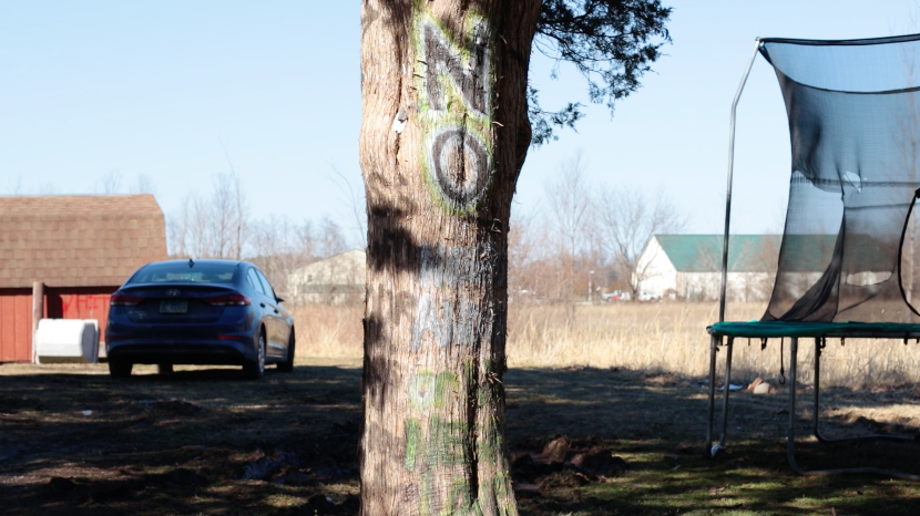 A painted tree sits outside of the neighbors house March 3, 2021, in Murphysboro, Ill. The neighbor created a disturbance in the neighborhood yesterday when he fired three shots from his shotgun and then painted a racist comment on the side of his shed. The comment was painted over soon after but he continued to paint messages on the trees in his front yard.