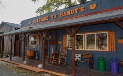 """Bandy's gift shop sits at the entrance of Bandy's Pumpkin Patch Oct. 13, 2021 in Johnston City, Ill. Co-owner of Bandys Pumpkin Patch, Kelly Bandy, said, """"We start this business in February, even though we dont open until September. Theres so much that goes into it that people dont know about."""""""